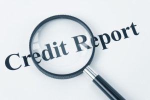 Information in Your Credit Report